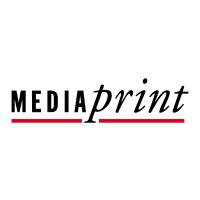 Mediaprint- VOCATUS Preisstrategie, Vertriebsoptimierung, Behavioral Economics